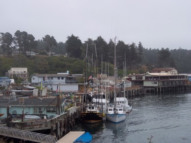 Noyo Harbor, Fort Bragg.